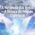 Lição 2- A Natureza dos Anjos - A Beleza do Mundo Espiritual