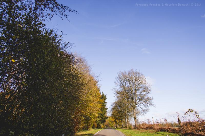 natureza e estrada