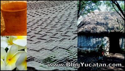 Se escribe malla o maya