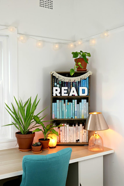 Hygge Winter Boho Home Styling Inspiration – Recycled Wood Bookshelves with Salt Lamp and Hard to Kill House Plants