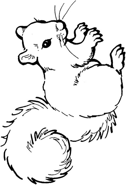 Free Coloring Pages Of Baby Birds In Nest  Coloring Pages  Squirrel  Coloring