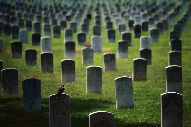 We Need to Change How We Bury the Dead