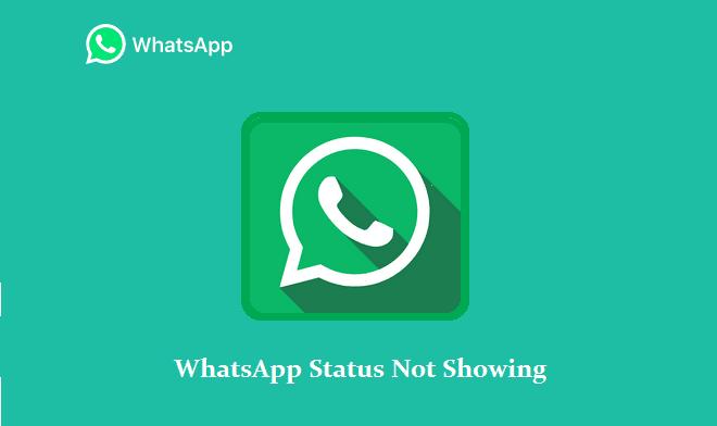 Status WhatsApp tidak muncul