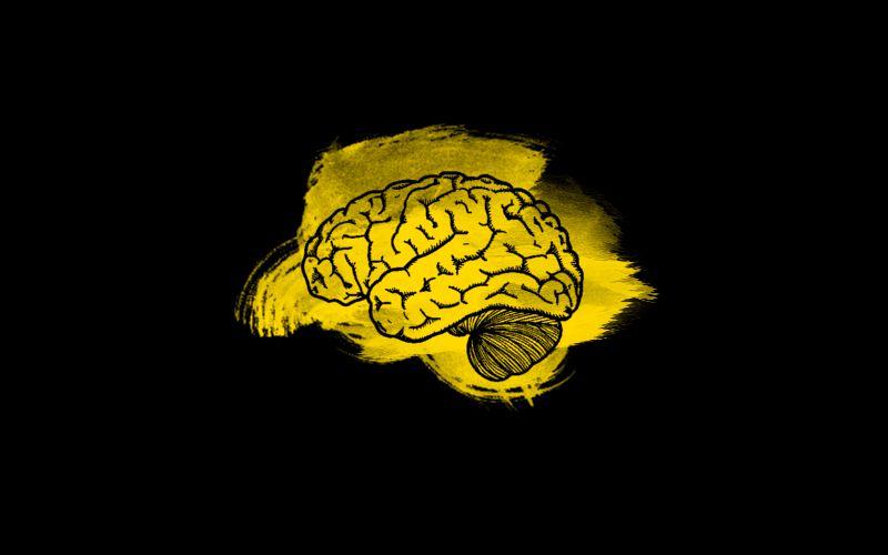 Dunning-Kruger Effect dan Kenapa Kita Punya Teman yang Sok Tau