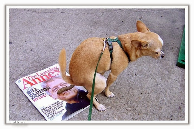 Funny Bill Clinton Dog Poop Mustache Magazine Joke Picture