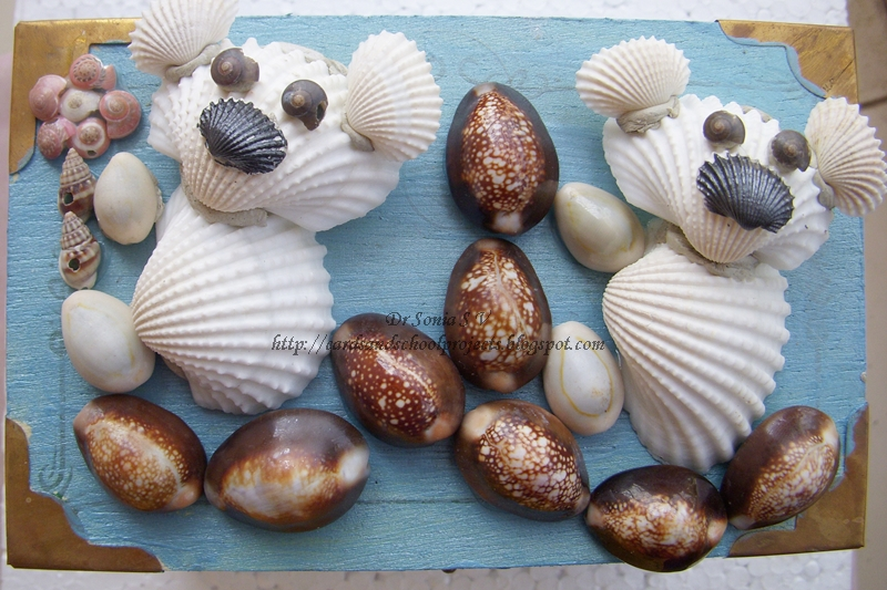 Shell Art and Craft- Altered Project