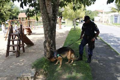 Cães reforçam policiamento da Guarda Municipal em Rio Bonito (RJ)