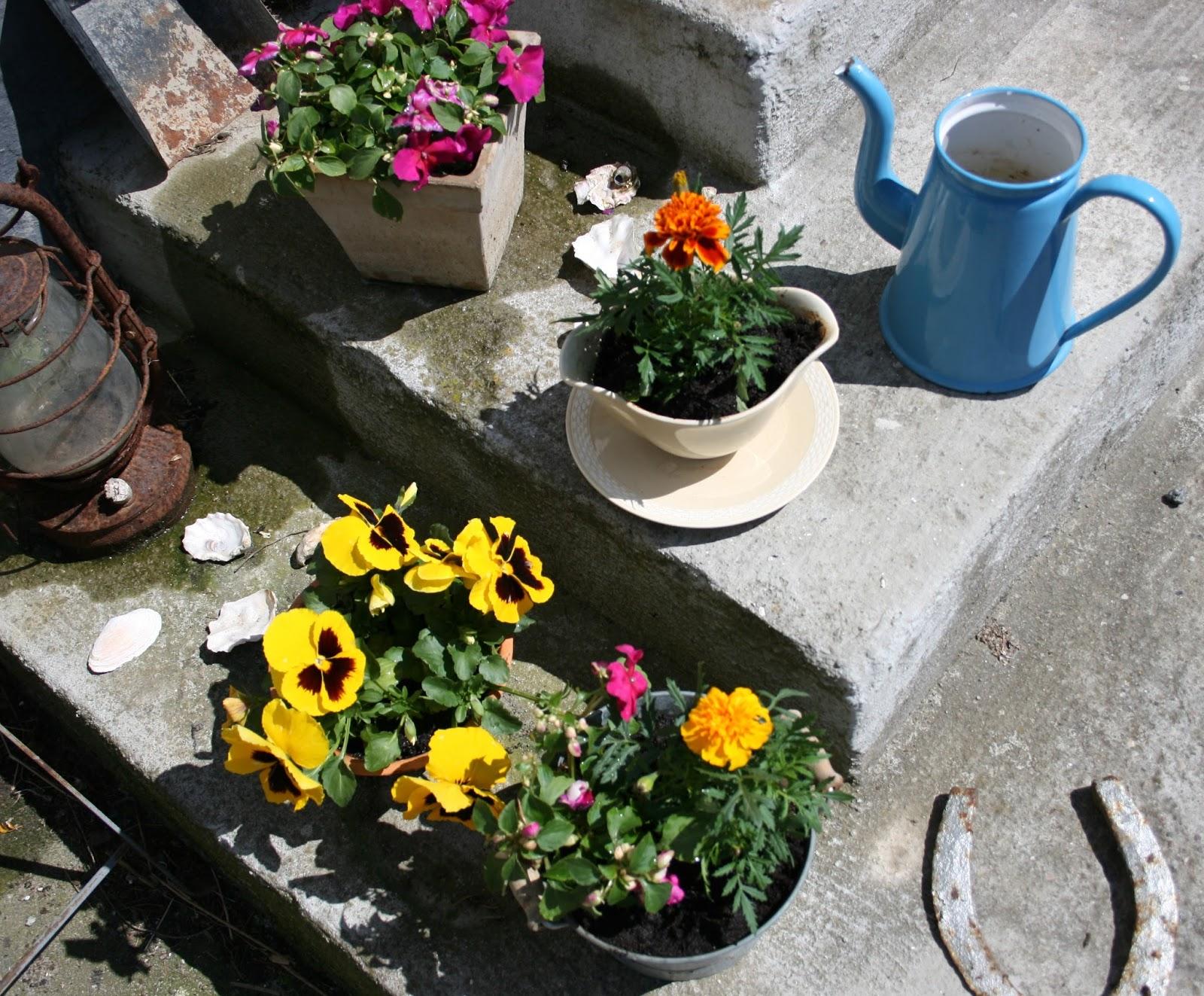 Gitte Barlev: En blomstertyv og dyreliv i haven ;-)