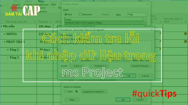 Cách kiểm tra lỗi khi nhập dữ liệu trong ms Project