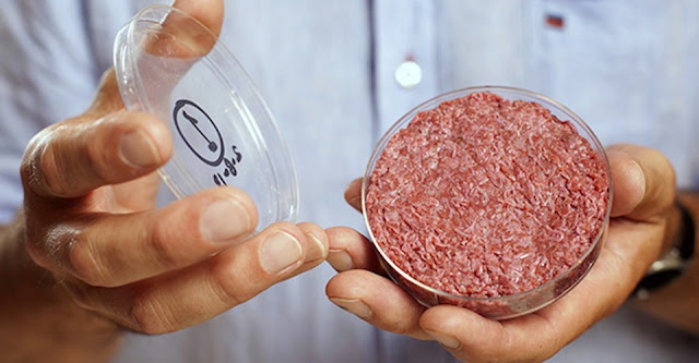 Meat based Protein may put men at greater risk of death - New Reports 2019