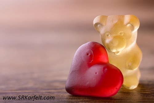 Taking Care of Gummy, S.R. Karfelt,