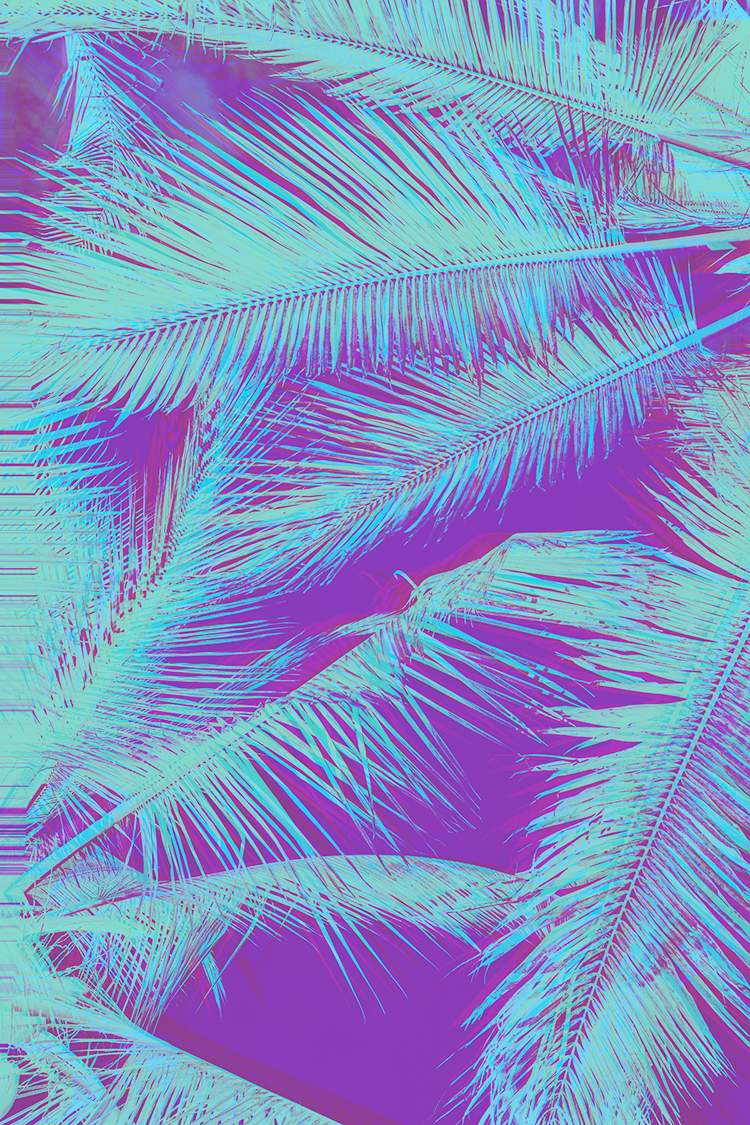 An abstract glitched image of a palm tree
