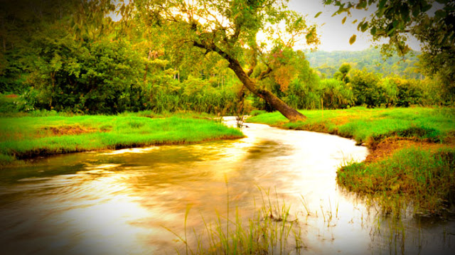 River Cauvery in Coorg, Resort in Coorg, Meriyanda Nature Lodge