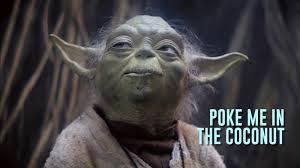 Leo Finelli Top 10 Yoda Quotes
