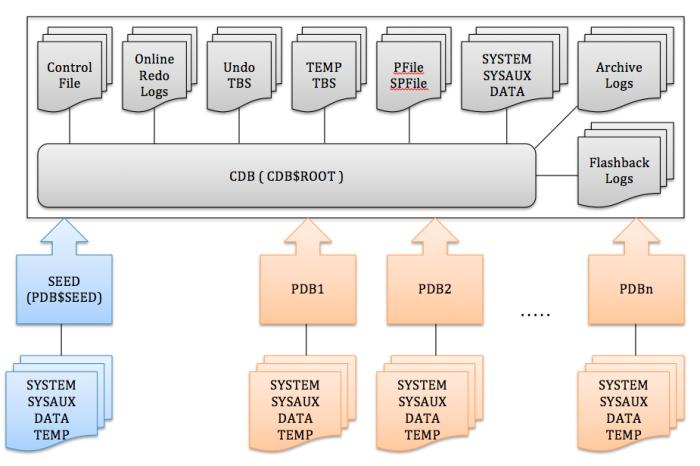 CDB & PDB FILES SYSTEM