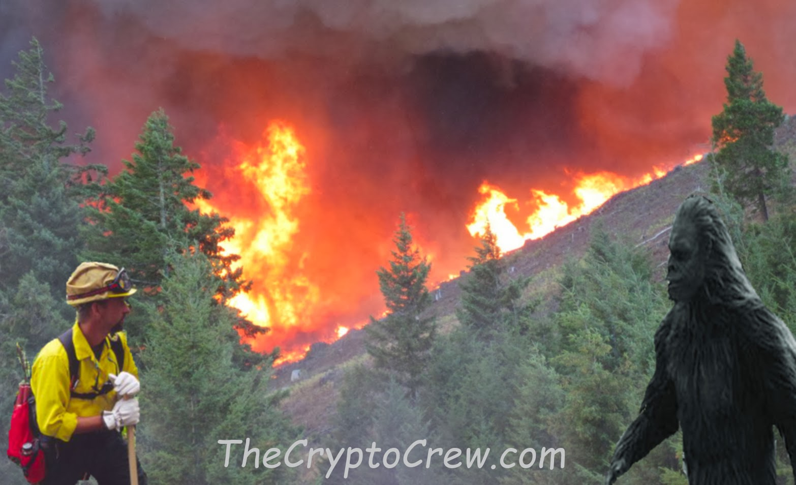 Wildland Firefighter Vs. Possible Bigfoot | The Crypto Crew | 1566 x 954 jpeg 172kB