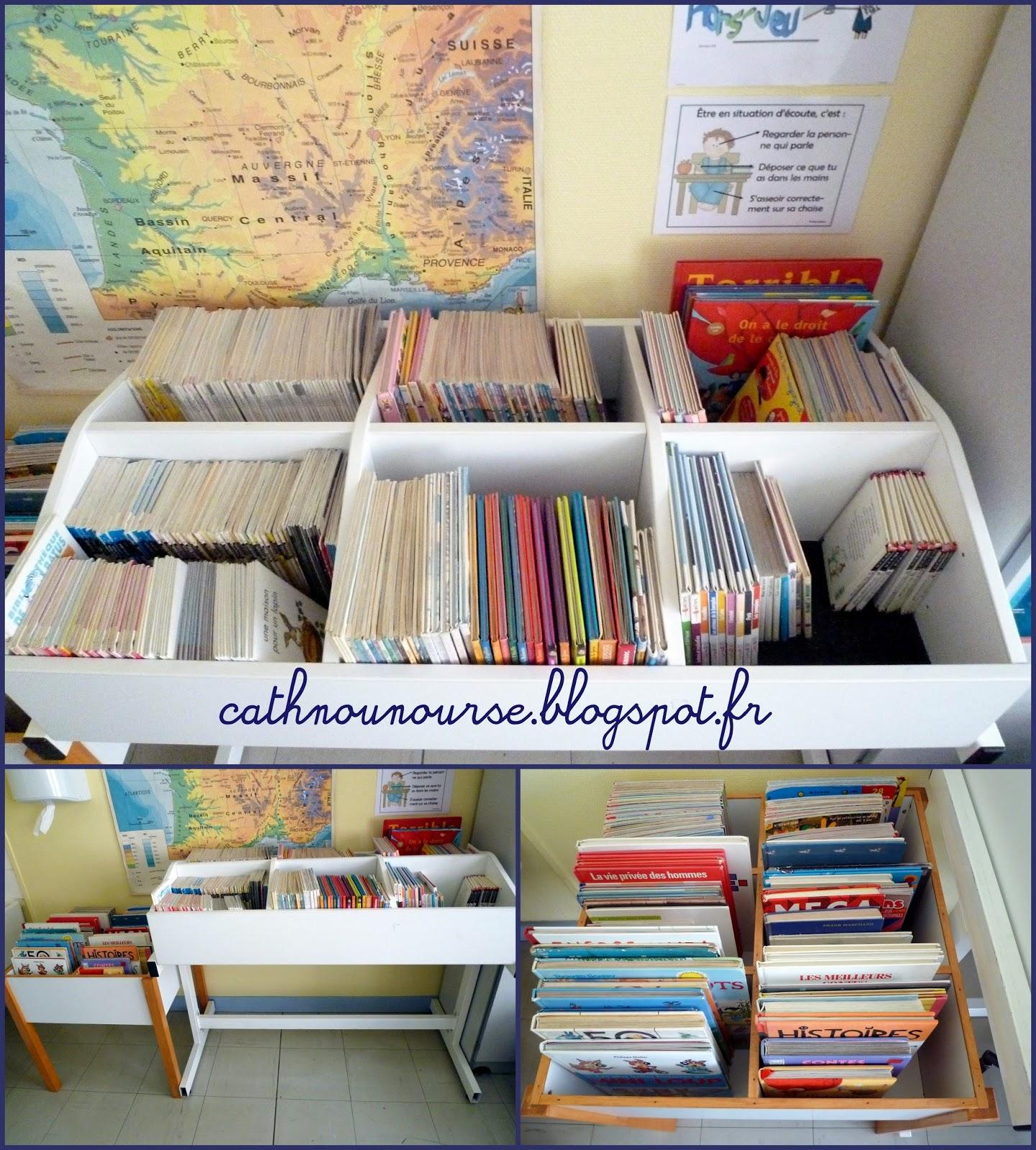 le blog de cathnounourse tri et rangement des livres de biblioth que. Black Bedroom Furniture Sets. Home Design Ideas