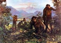 Riassunto per le scuole sull'homo erectus