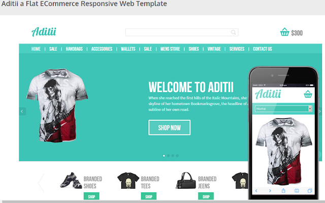 Aditii a Flat ECommerce Responsive Web Template Screenshot