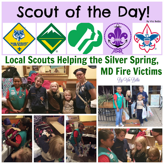 Local Scouts Helping the Silver Spring, MD Fire Victims {Scout of the Day} , El Golfo, Pack 33, Troop 5823, Boy Scouts, Girl Scouts, Silver Spring Fire, Helping out, Giving back, Scout of the Day