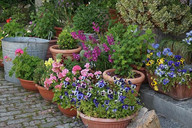 Il mio giardino al naturale naturalmente giardino