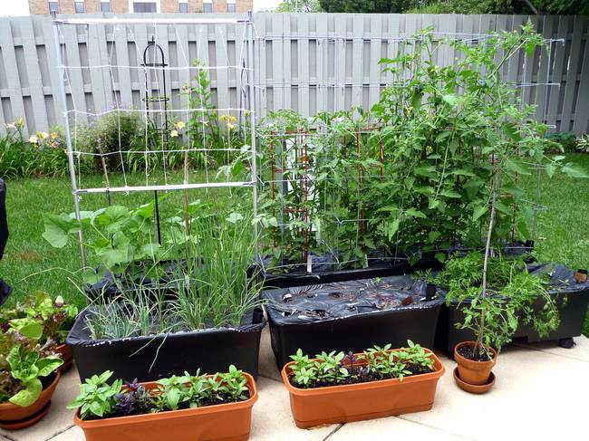 Earthbox Type Containers For Your Garden