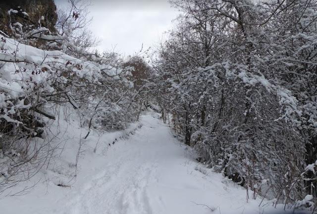 inizio del sentiero A14 a Rocca d'Aveto