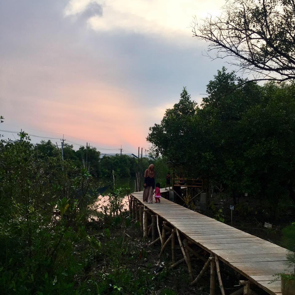 Edu-Ekowisata Mangrove Sukorejo