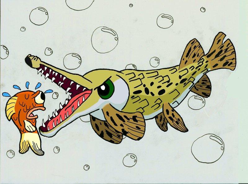 Monster Fish Alligators Gars