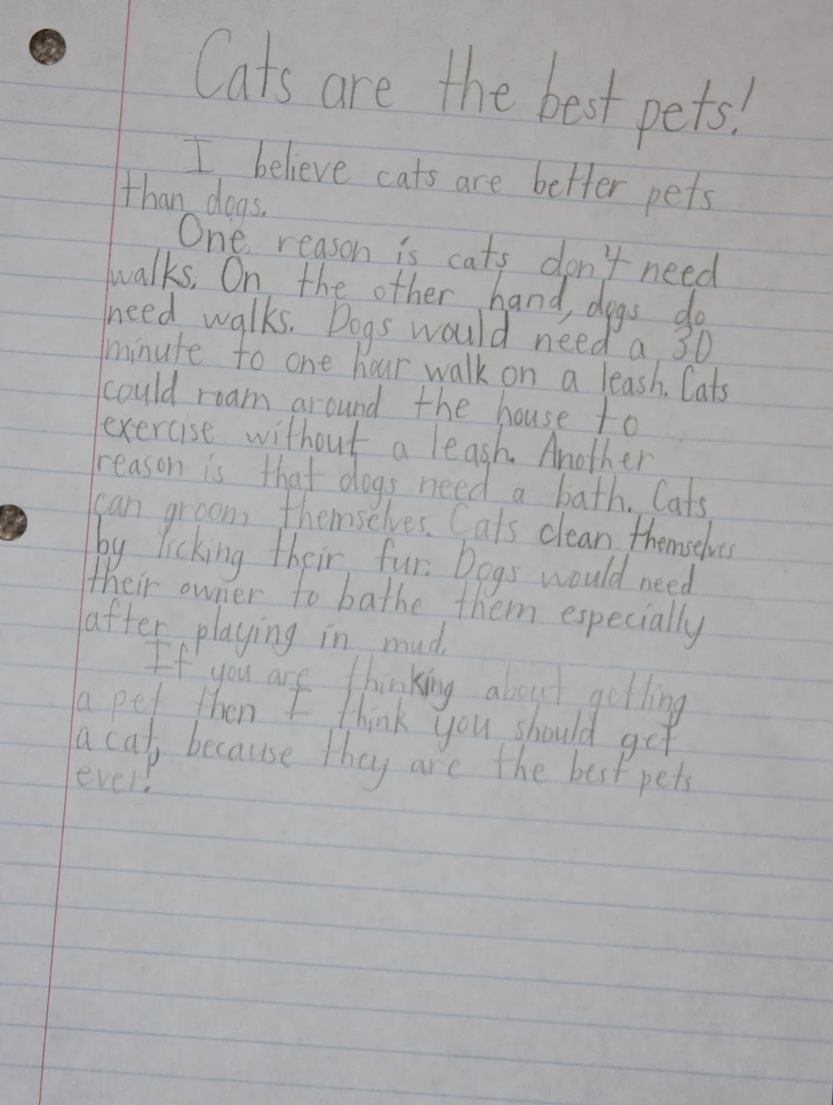 Why dogs are better pets than cats persuasive essay