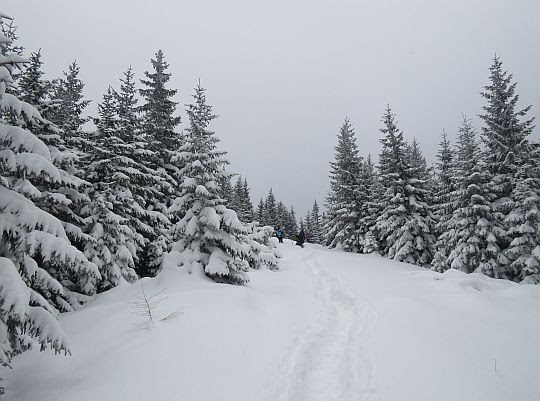 Baśniowa zima, kraina miękkiego puchu.