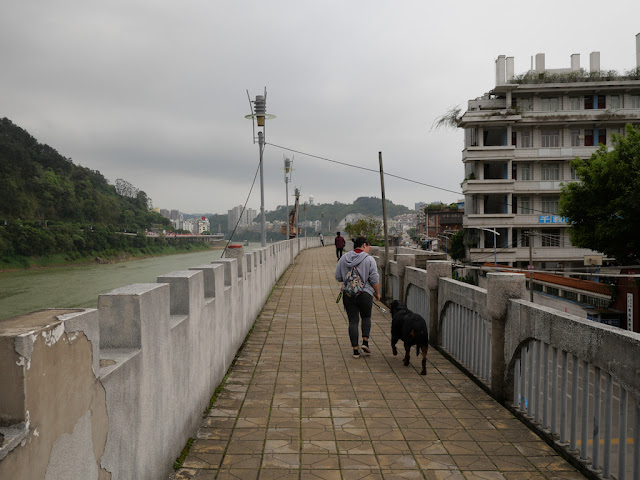 woman walking a dog on a wall bordering the Gui River (桂江) in Wuzhou (梧州)