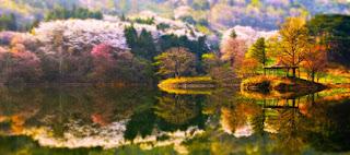 كوكتيل صور عن الطبيعة