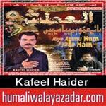 http://audionohay.blogspot.com/2014/10/kafeel-haider-india-nohay-2015.html