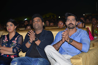 Nenu Local Audio Launch Stills  0194.JPG
