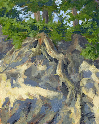 art painting nature roots tree evergreen pine mountain