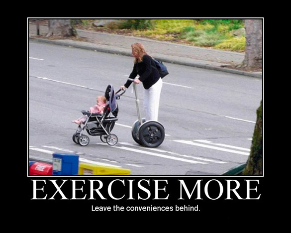 Of Animals Photo Of Funny Animals Funny Baby Walllpaper Animals With Baby Exercise Funny Dog With Car Exercise Picture Most Popular Funny Animals