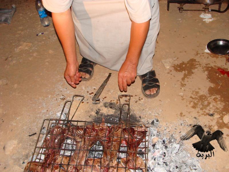 مقناص العراق الرطبة - صيد وشوي ارانب - البرية