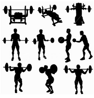The Schedule of Bodybuilding Workout for Beginners