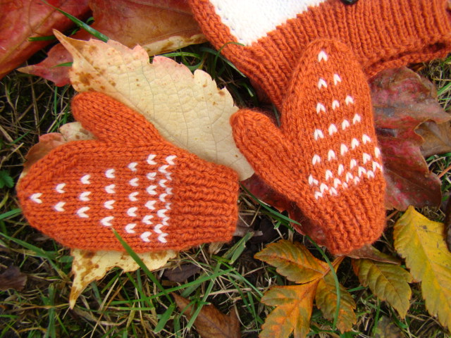 comment tricoter la laine foxy