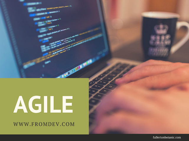 10 Reasons to Adopt Agile Development