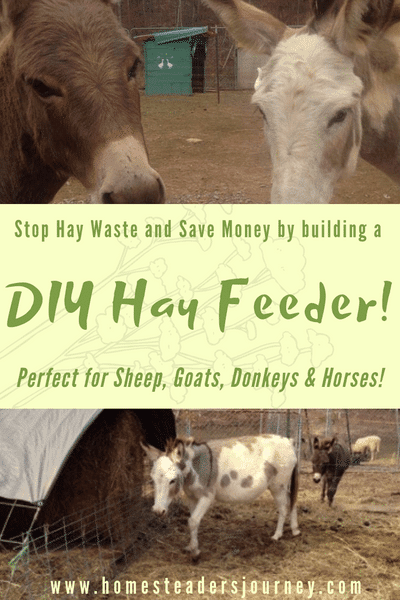 DIY Hay Feeder! Reduce waste and Save money on hay!