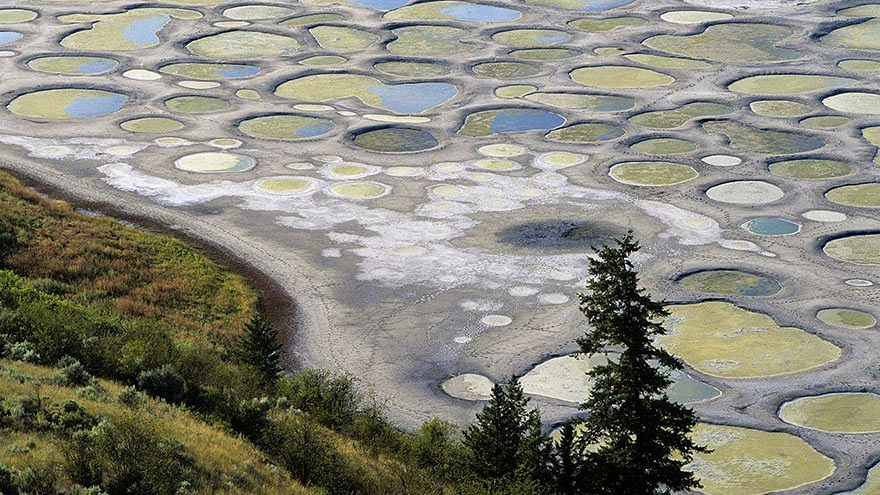 26. Spotted Lake in Osoyoos, British Columbia - 29 Unbelievable Locations That Look Like They're Located On Another Planet