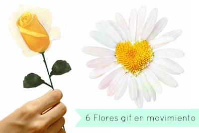 6 Flores Imagenes Gifs en Movimiento