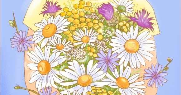 Nicole S Free Coloring Pages Wildflowers For A Happy Day