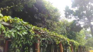 Pendopo Kota Bandung