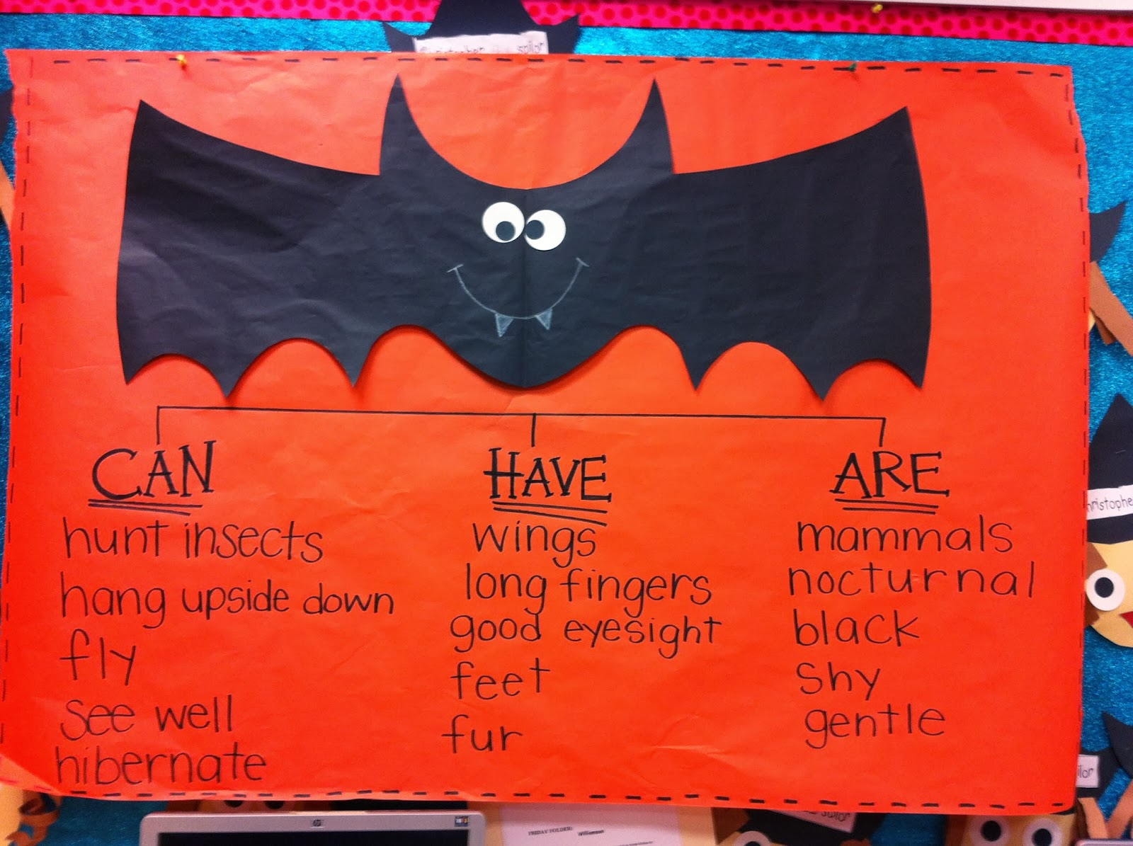 Welcome To Room 36 Pumpkins And Bats