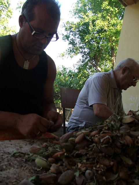 Symbio,biscotti di mandorla,mąka z migdalów,ciastka migdałowe,Sycylia,migdały,