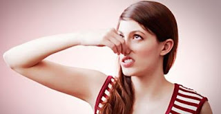 Cara Menghilangkan Bau Badan dengan Daun Kemangi