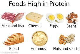 Macam, Metabolisme, dan Pemecah Protein